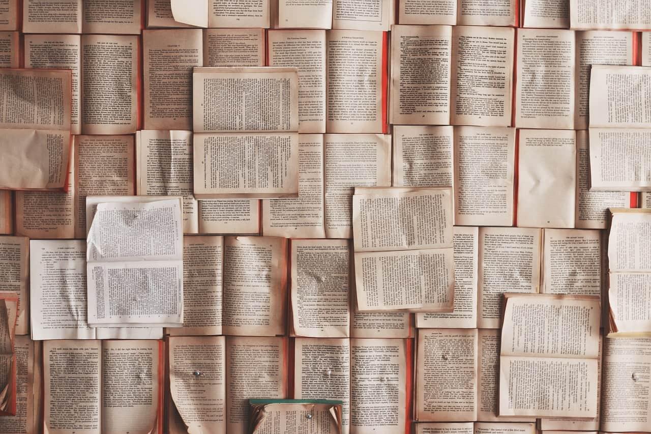 Biblioteca anticonvenzionale - i netturbini recuperano i libri e li salvano dal macero