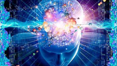 Photo of Alcune cose sulla mente umana che probabilmente non sai