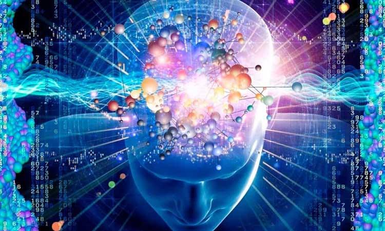Alcune cose sulla mente umana che probabilmente non sai