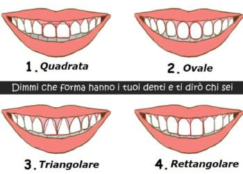 Forma dei denti e personalità cosa dice di noi