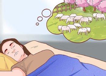 Contare le pecore prima di dormire l'errore che tutti fanno