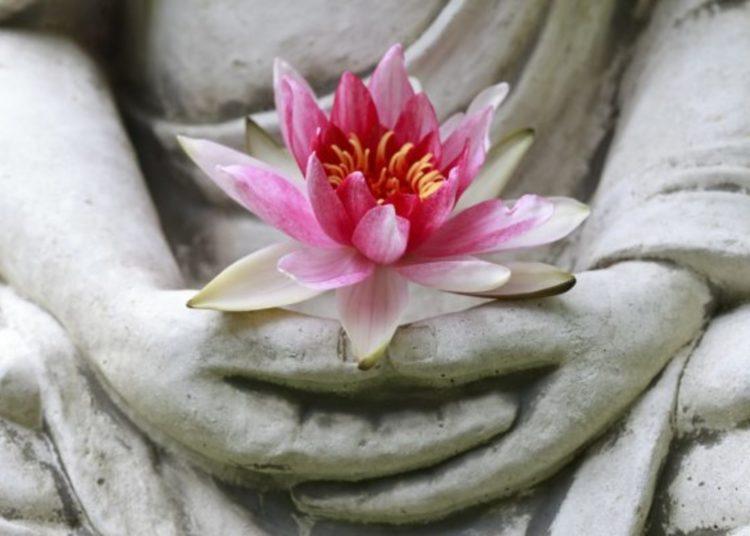 Relazione prosperosa le 4 caratteristiche necessarie secondo un monaco buddista