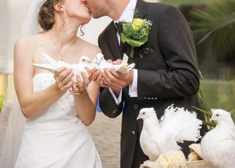 matrimonio foto free covid positivo sposa pixabay