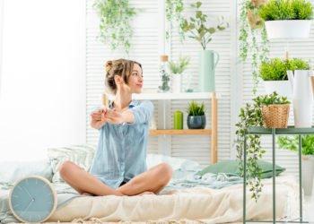 Le piante che aiutano a dormire e che non possono mancare in camera