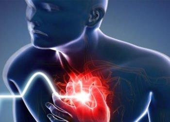 Un nuovo studio sui gemelli scopre il meccanismo che causa l'infarto
