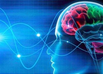 Le abitudini che danneggiano il cervello secondo gli esperti